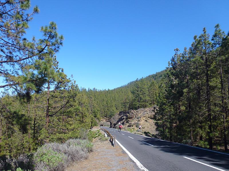 Parque National del Teide - Auffahrten
