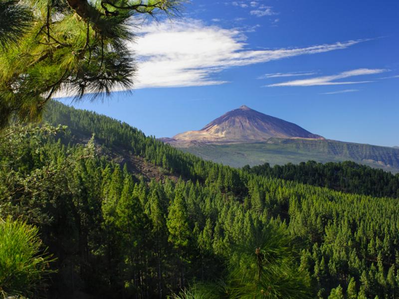 Pico del Teide - Orotavatal