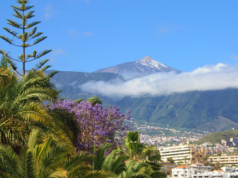 Pico del Teide - Puerto de la Cruz